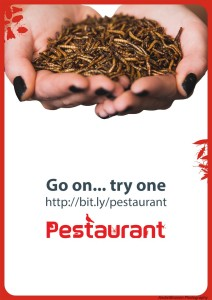 Mealworms_Handful