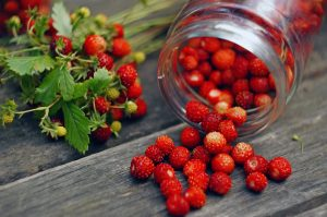 Composition with berries of wild strawberry